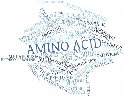 Amino Acids And HGH